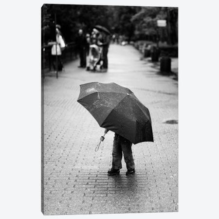 Rainy Day Canvas Print #OXM3737} by Liesbeth van der Werf Canvas Art