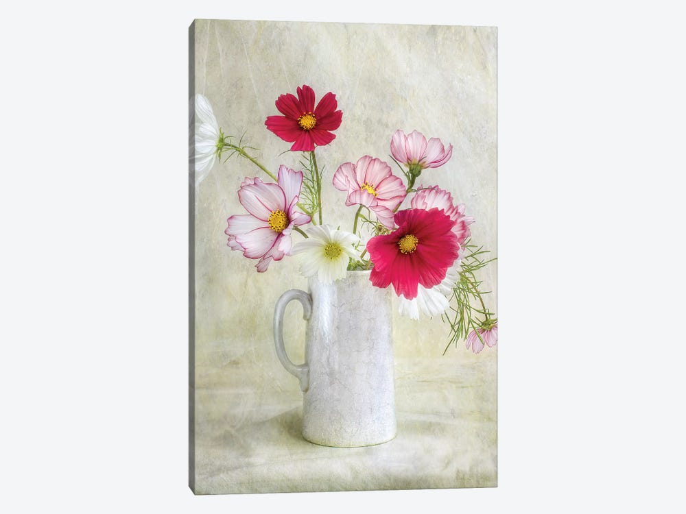 Cosmos Carnival by Mandy Disher 1-piece Art Print