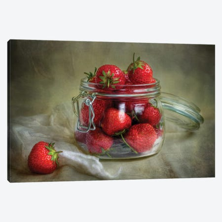 Tastes Of Summer Canvas Print #OXM3768} by Mandy Disher Canvas Wall Art