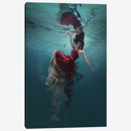 Evanesced Canvas Print #OXM3799} by Martha Suherman Canvas Art Print