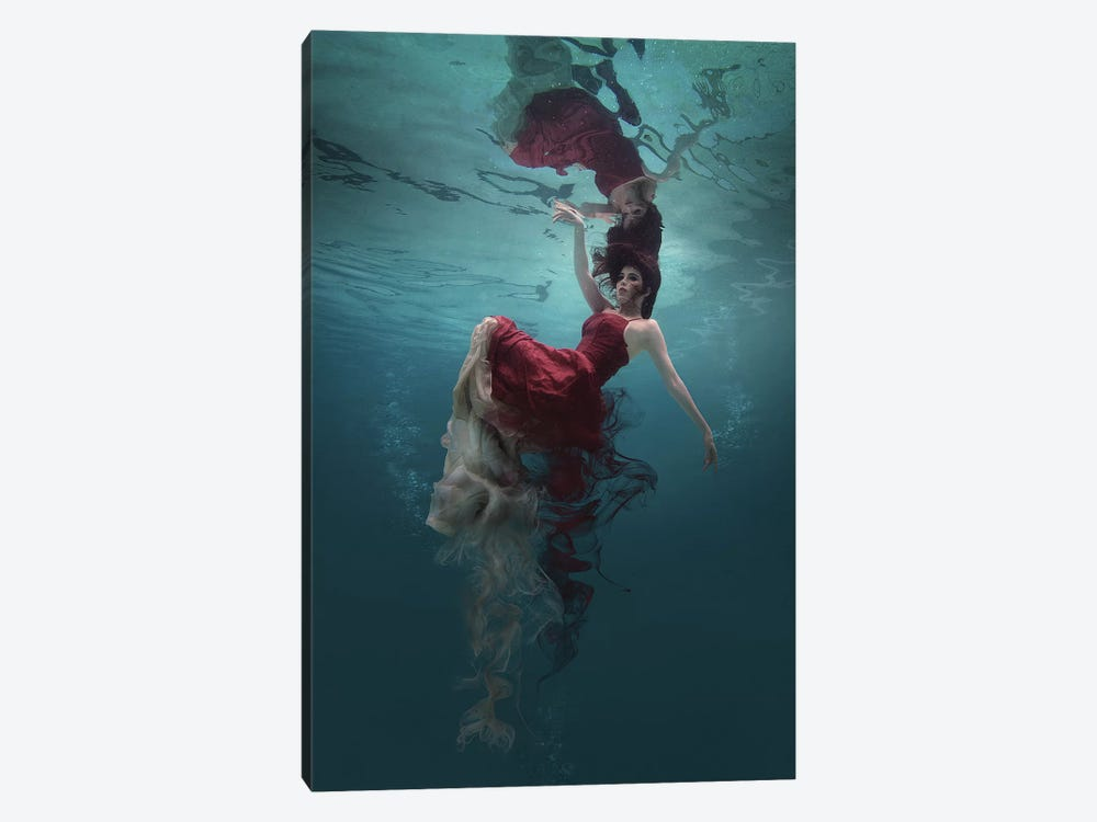 Evanesced by Martha Suherman 1-piece Canvas Wall Art