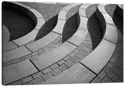 Curves Canvas Art Print