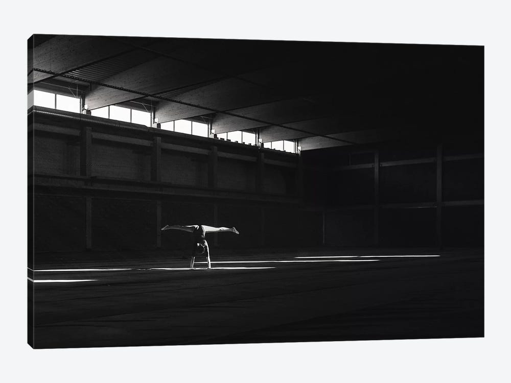 Ballando Nella Luce by Martin Krystynek 1-piece Canvas Art