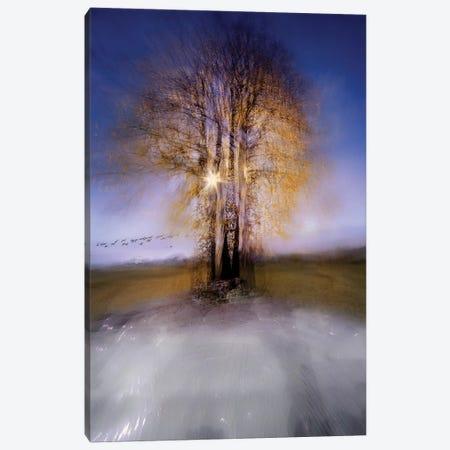 Round Canvas Print #OXM3848} by Milan Malovrh Canvas Art Print