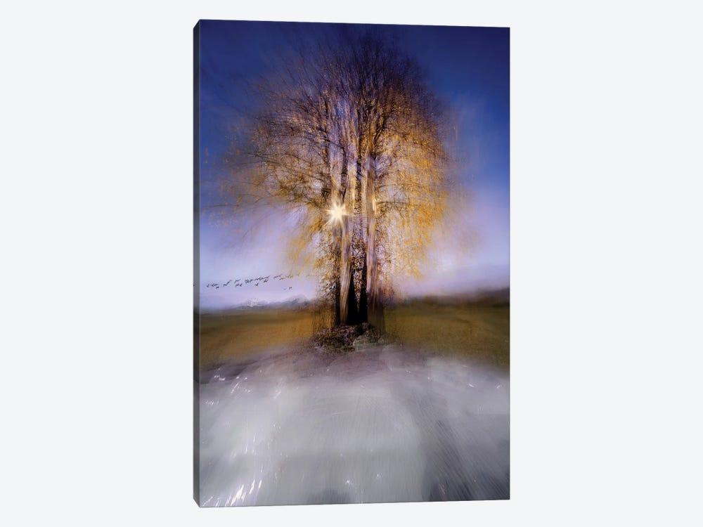 Round by Milan Malovrh 1-piece Canvas Art