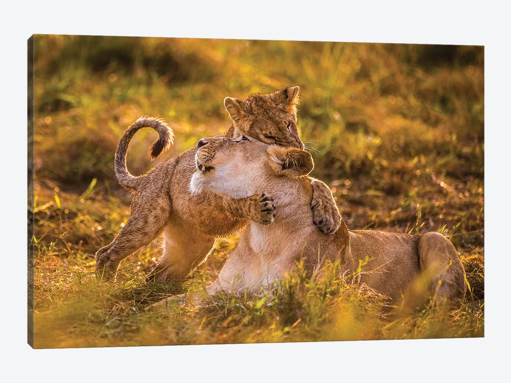 Charm by Mohammed Alnaser 1-piece Canvas Print