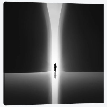 Rebirth Canvas Print #OXM3863} by Nadav Jonas Art Print