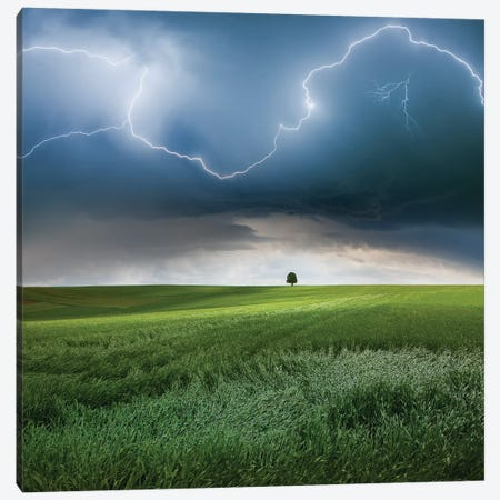 Someplace In Summer Canvas Print #OXM3873} by Nicolas Schumacher Canvas Wall Art