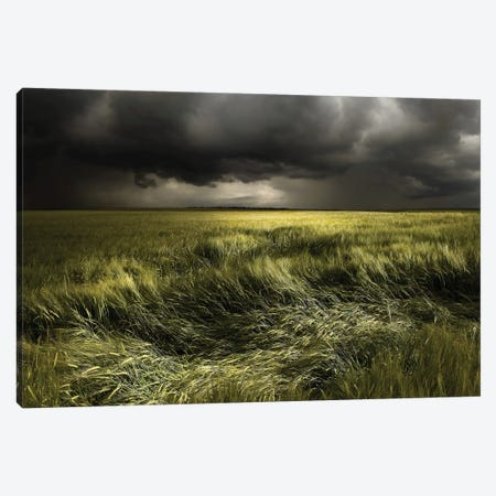 Summer Weather Canvas Print #OXM3874} by Nicolas Schumacher Canvas Print