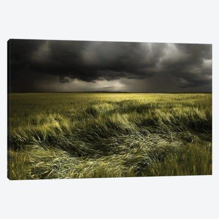 Summer Weather Canvas Print #OXM3874} by Nicolas Schumacher Canvas Print