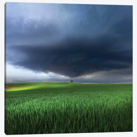 Thunderstorm Cell Over The Alb Plateau Canvas Print #OXM3875} by Nicolas Schumacher Art Print