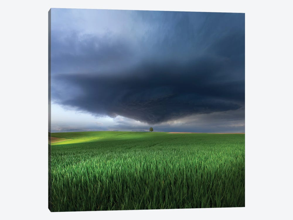Thunderstorm Cell Over The Alb Plateau by Nicolas Schumacher 1-piece Canvas Artwork