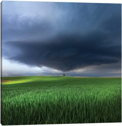 Thunderstorm Cell Over The Alb Plateau Canvas Art Print