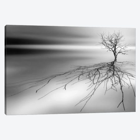 Even The Dead Cast Shadows Canvas Print #OXM387} by Leif Løndal Canvas Art