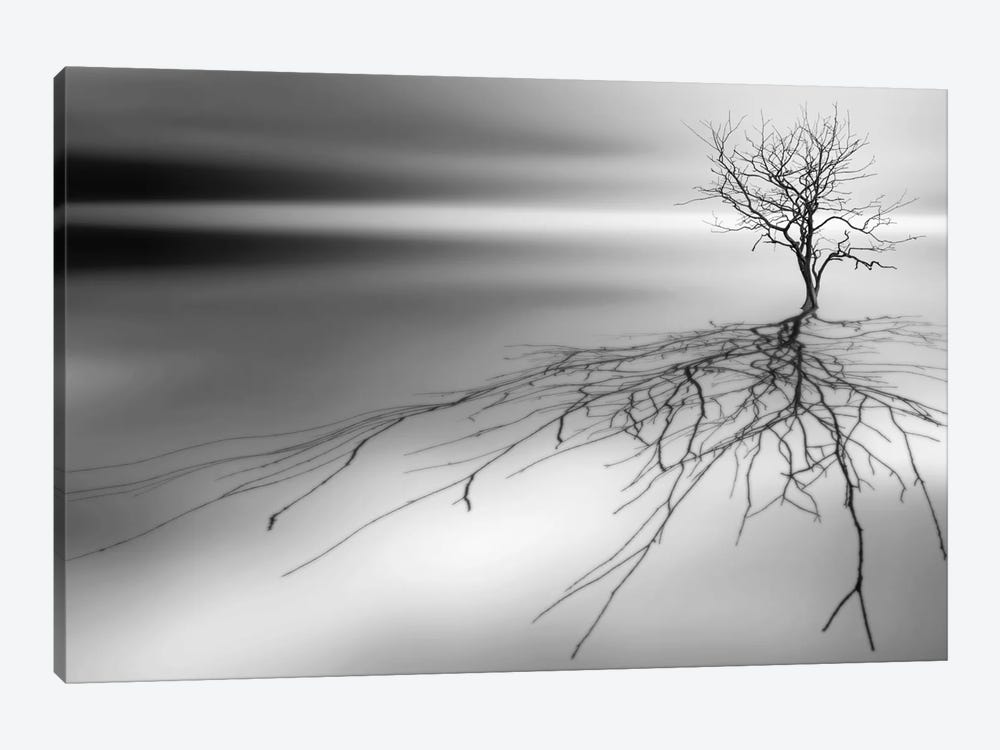Even The Dead Cast Shadows by Leif Løndal 1-piece Canvas Wall Art