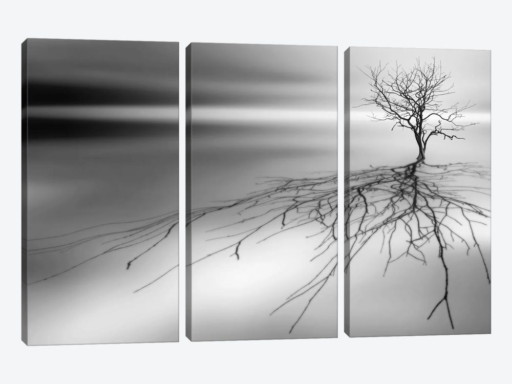 Even The Dead Cast Shadows by Leif Løndal 3-piece Canvas Wall Art