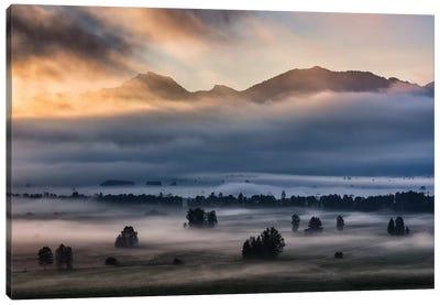 Autumn Morning... Canvas Art Print