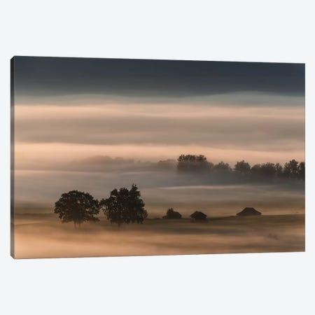 Dense Fog Over The Moos... Canvas Print #OXM3881} by Nina Pauli Canvas Print