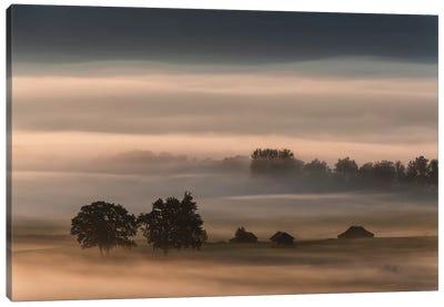 Dense Fog Over The Moos... Canvas Art Print
