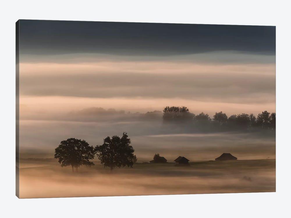 Dense Fog Over The Moos... by Nina Pauli 1-piece Canvas Print