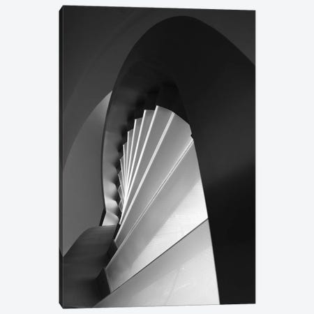 Straight And Curves Lines Canvas Print #OXM3890} by Olavo Azevedo Canvas Art
