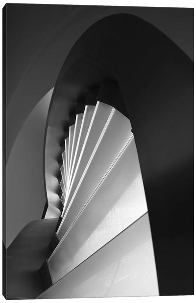 Straight And Curves Lines Canvas Art Print