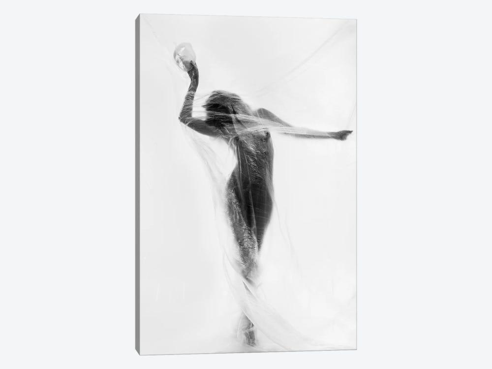 The Mask Dance by Patrick Odorizzi 1-piece Canvas Art Print