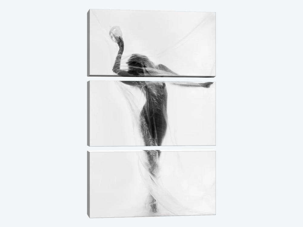 The Mask Dance by Patrick Odorizzi 3-piece Art Print