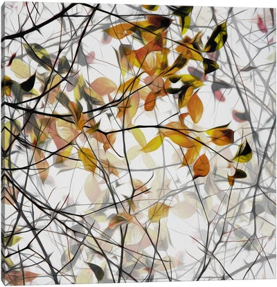 Autumn Song Canvas Art Print