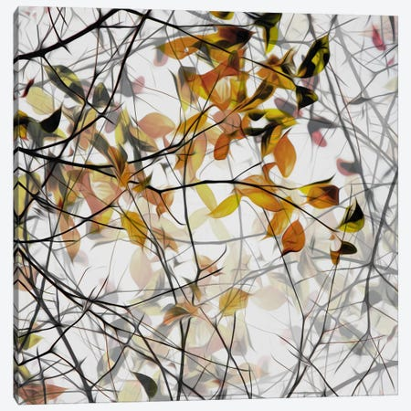 Autumn Song Canvas Print #OXM391} by Gilbert Claes Canvas Art