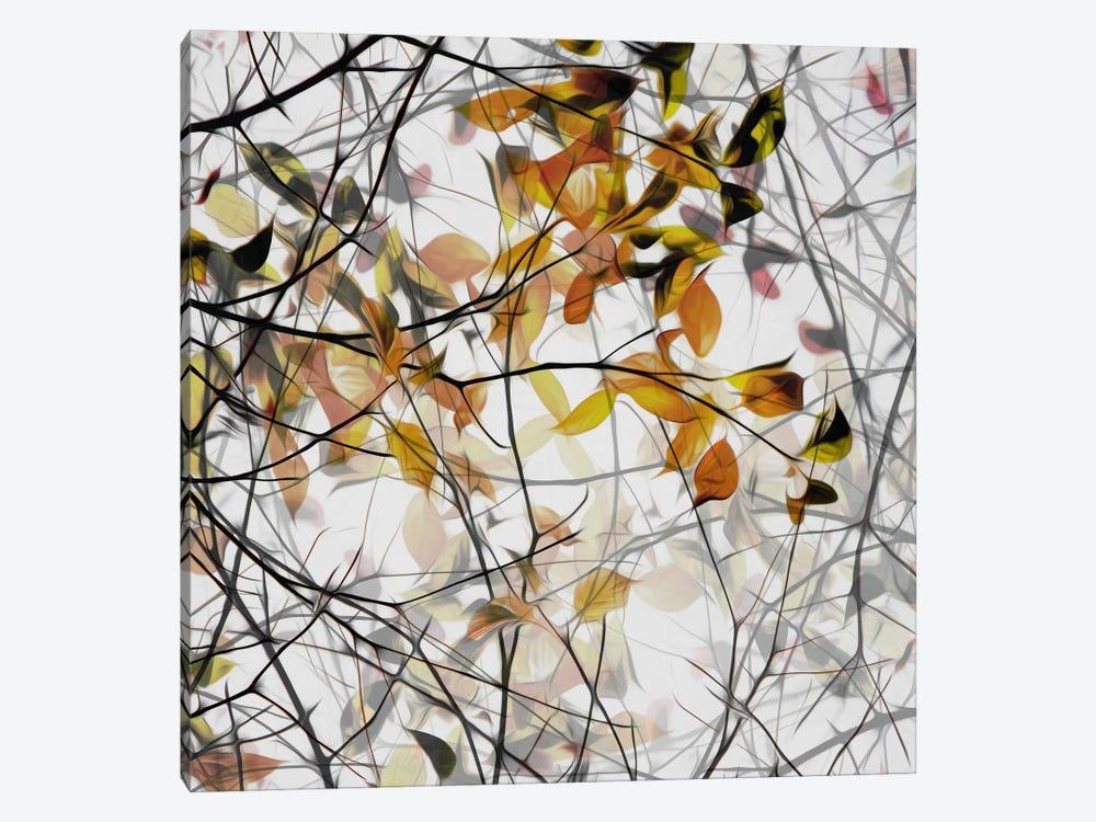 Autumn Song by Gilbert Claes 1-piece Art Print