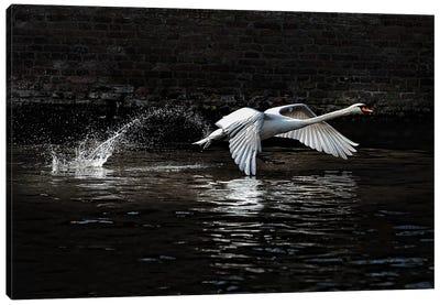 L\'Envol Canvas Art Print