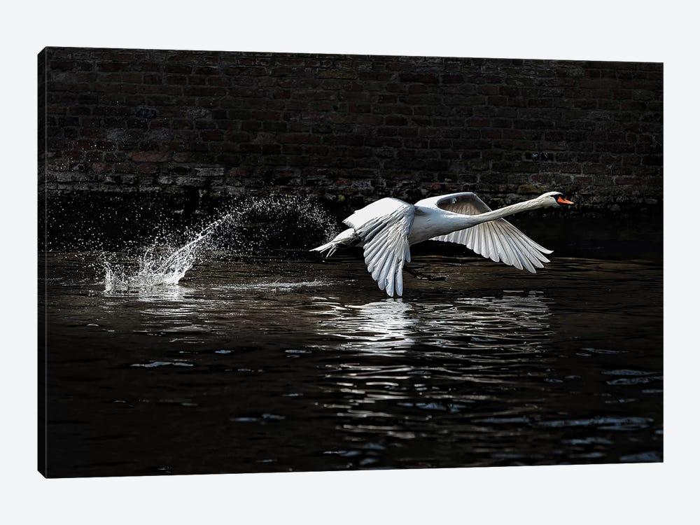 L\'Envol by Piet Flour 1-piece Canvas Art Print