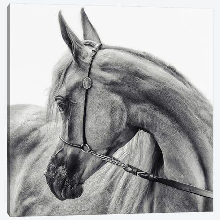 The Arabian Horse Canvas Print #OXM3945} by Piet Flour Art Print