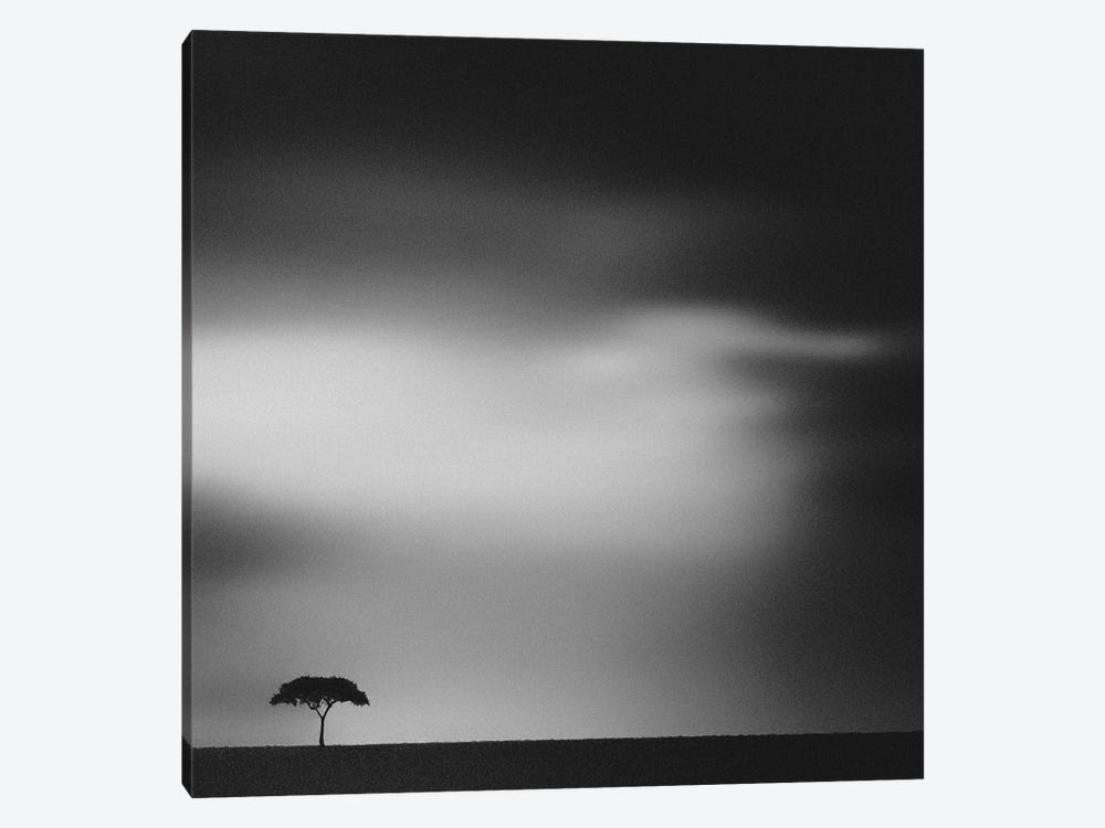 The Plains by Piet Flour 1-piece Canvas Wall Art