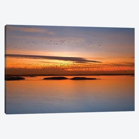 By Sunset Canvas Print #OXM3955} by Piotr Krol Canvas Artwork
