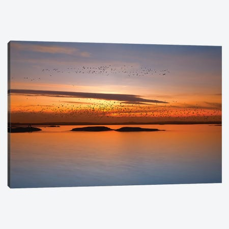 By Sunset Canvas Print #OXM3955} by Piotr Krol Canvas Artwork