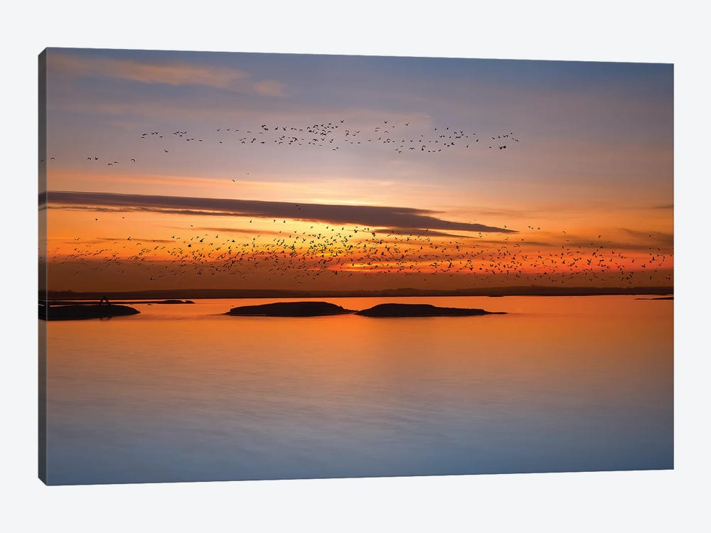 By Sunset by Piotr Krol 1-piece Canvas Print