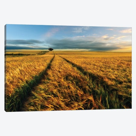 Countryside Canvas Print #OXM3956} by Piotr Krol Canvas Artwork
