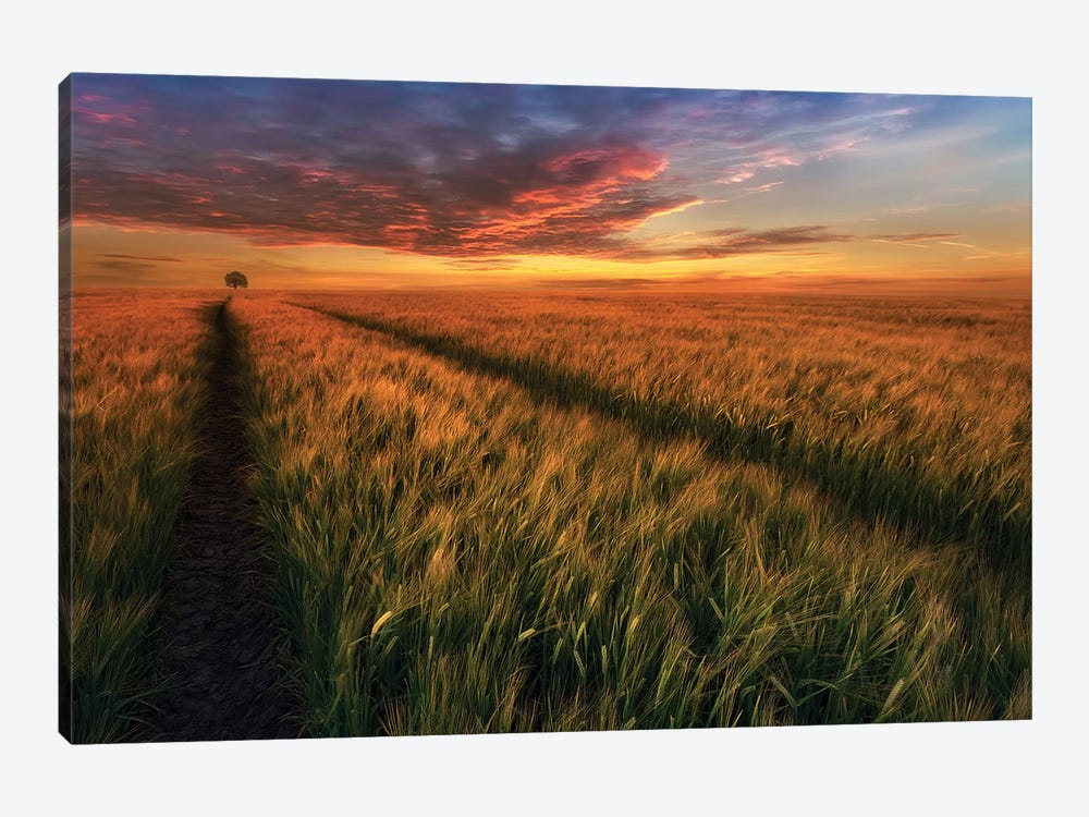 Somewhere At Sunset by Piotr Krol 1-piece Canvas Print