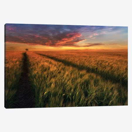 Somewhere At Sunset Canvas Print #OXM3959} by Piotr Krol Canvas Print