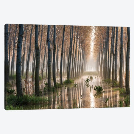 Rains Of Spring Canvas Print #OXM3965} by Raffaele Spettoli Art Print