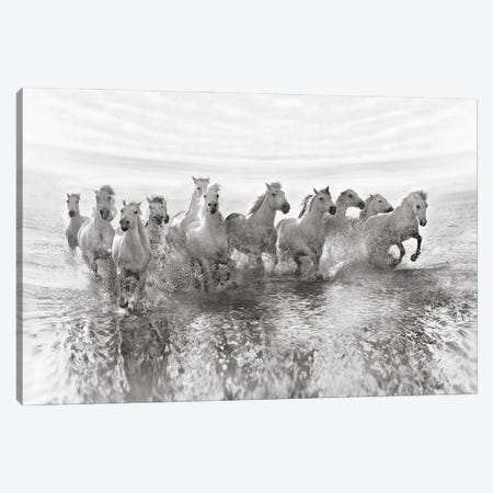 Illusion Of Power (13 Horse Power Though) Canvas Print #OXM3987} by Roman Golubenko Art Print