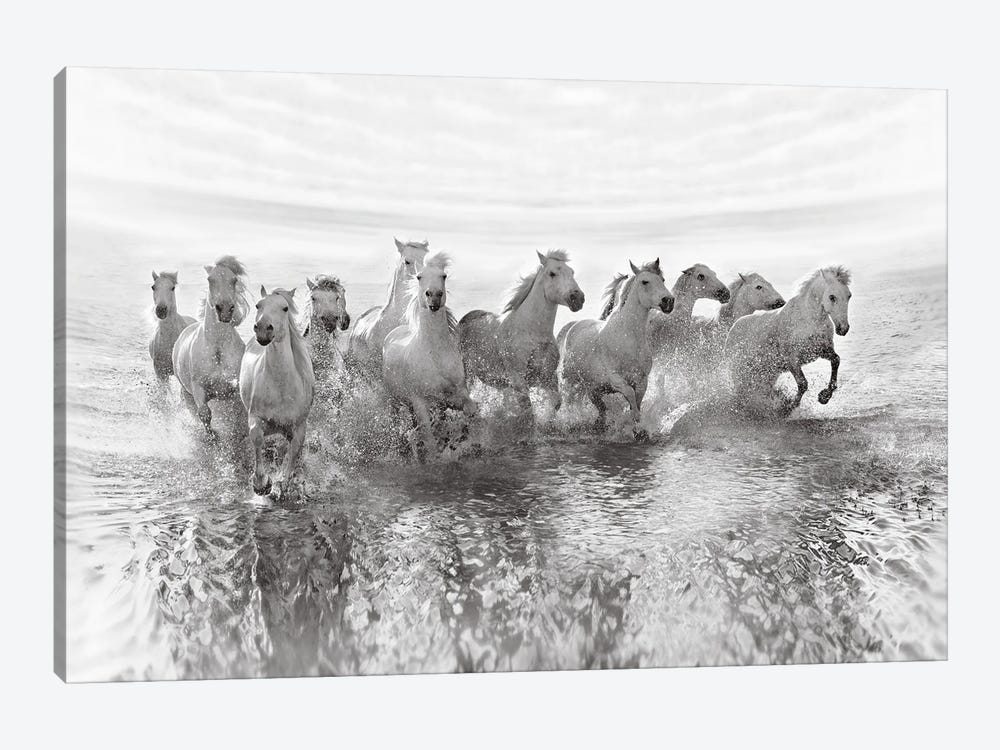 Illusion Of Power (13 Horse Power Though) 1-piece Canvas Art