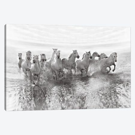 Illusion Of Power (13 Horse Power Though) Canvas Print #OXM3987} by Roman Golubenko Art Print