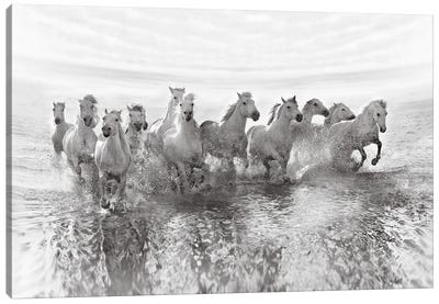 Illusion Of Power (13 Horse Power Though) Canvas Art Print