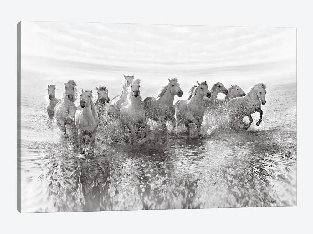 Illusion Of Power (13 Horse Power Though) by Roman Golubenko 1-piece Canvas Art