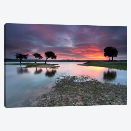 The Blessing Of The Sun Canvas Print #OXM4000} by Rui David Canvas Art