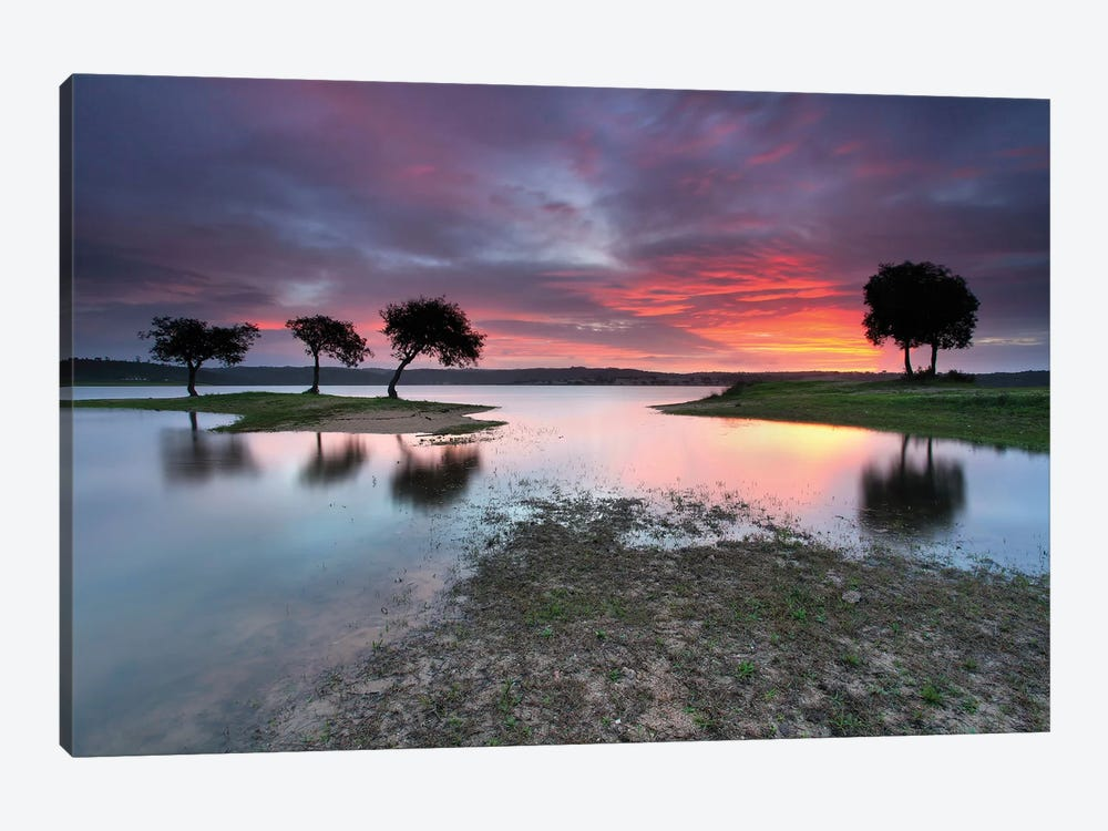 The Blessing Of The Sun by Rui David 1-piece Canvas Art Print