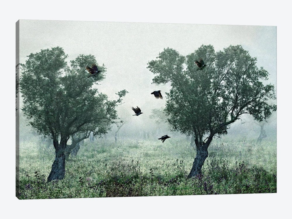 Crows In The Mist by S. Amer 1-piece Canvas Print